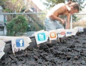 Oportunidades de Marketing y redes sociales para tu marca.